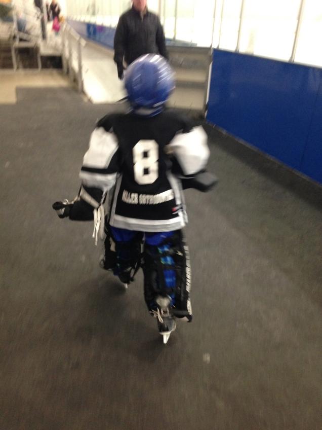 Heading to the ice